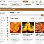和歌山県和歌山市(わかやまし) ふるさと納税の申し込み受付を開始